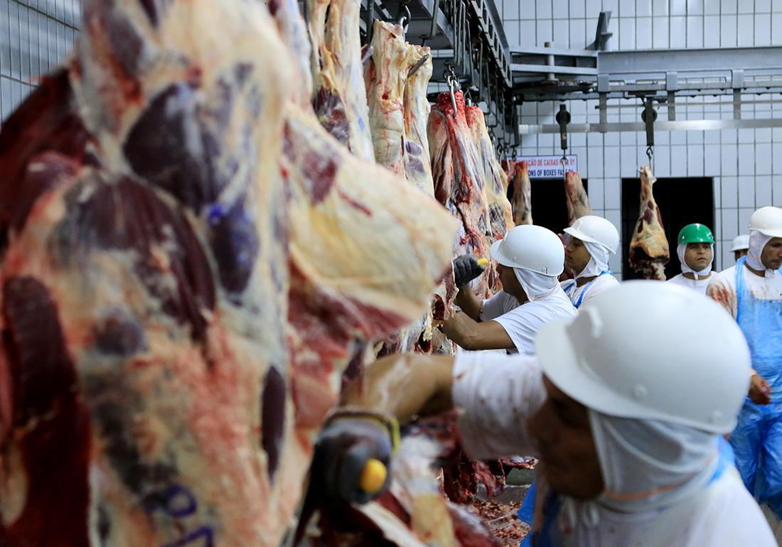 frigorífico carne