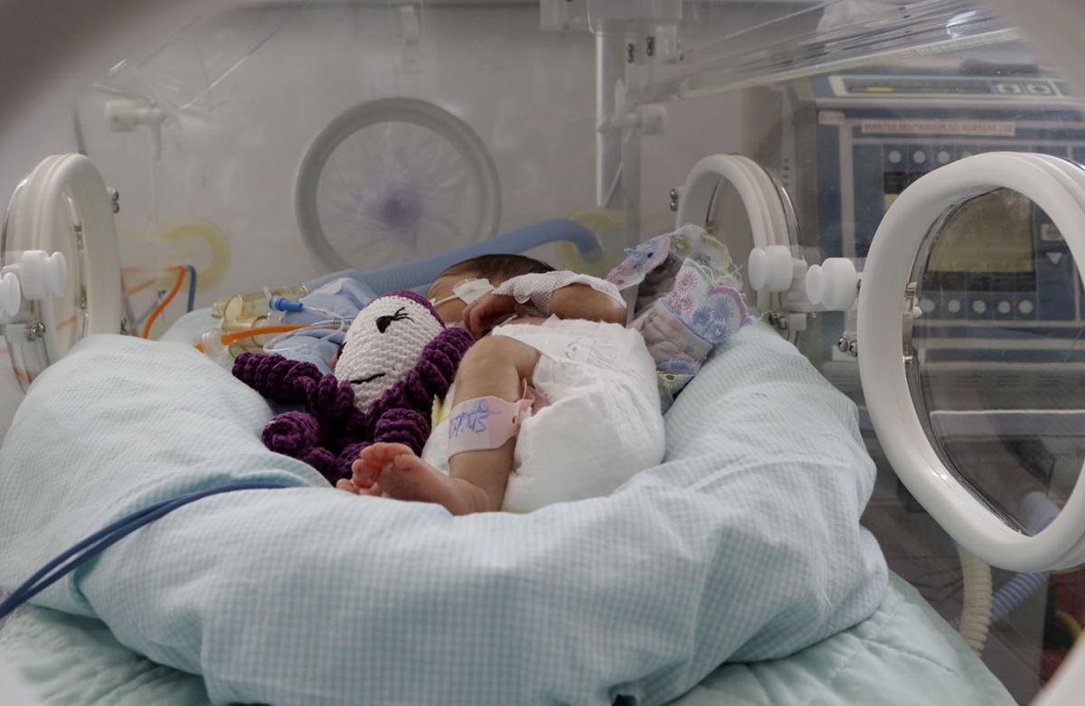 UTI Neonatal, polvo - Ednilson Aguiar/O Livre