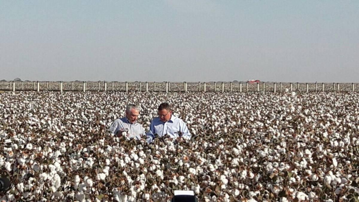 Presidente Michel Temer ao lado do ministro da Agricultura Blairo Maggi - Assessoria
