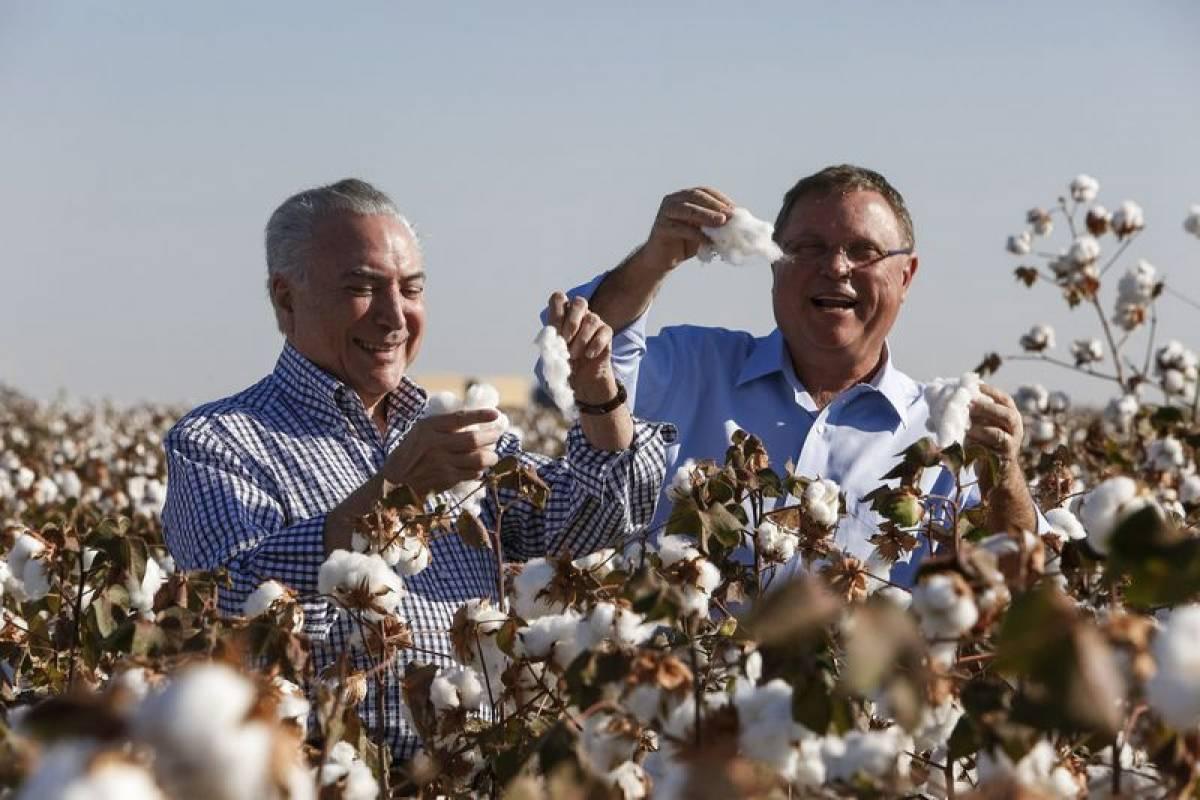 Temer visita lavoura de algodão em Lucas do Rio Verde com Blairo - Alan Santos/Presidência