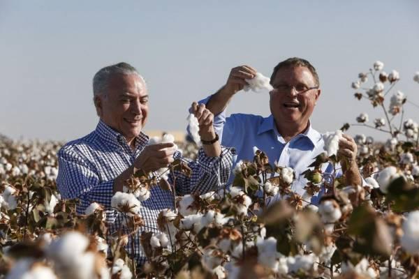 Temer visita lavoura de algodão em Lucas do Rio Verde com Blairo