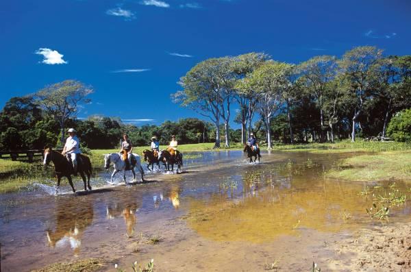 Passeio a cavalo pelas paisagens do pantanal